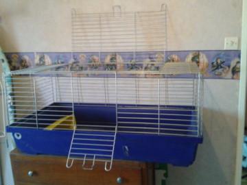 A vendre : cage & accessoires + boite de transport (68) Medium